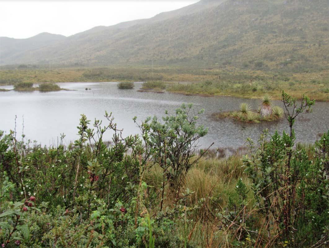 Laguna colombia rio teusaca acueducto